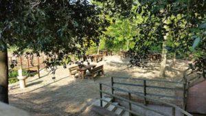 area picnic val di sangro linea gustav